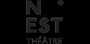 logo CDN Nest